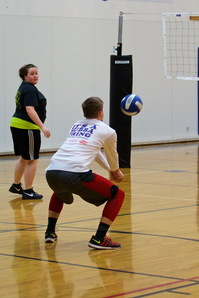 Albany Parks and Rec Volleyball - Winter 2017