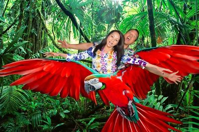 Mandy's Hawaii Five-O Birthday