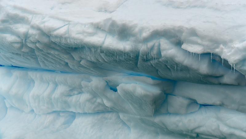 Antarctica-0385.jpg