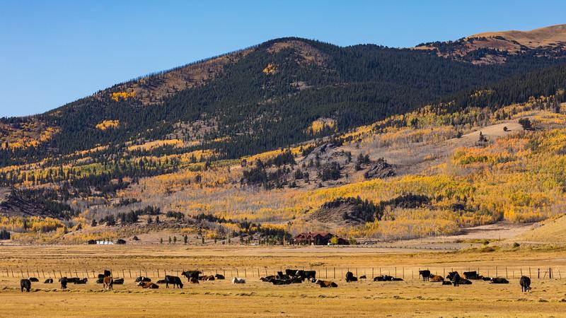 Colorado19_5D4-1004.jpg