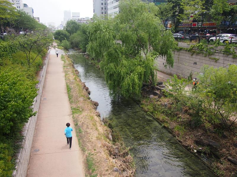 P6283907-cheonggyecheon-stream-path.JPG