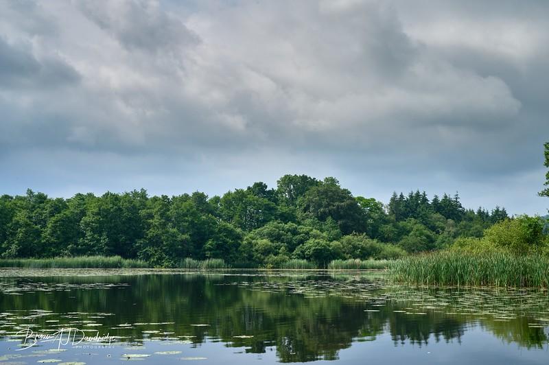 Burton Mill Pond-1921 - 9-18 am.jpg