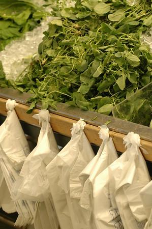 2008-10-12 Farmer's Market