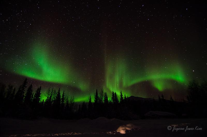 USA-Alaska-Wiseman-Aurora-2844.jpg