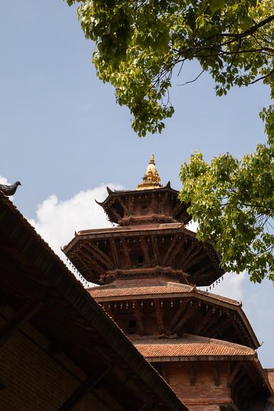 190407-131948-Nepal India-5902.jpg