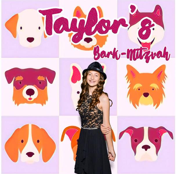 Taylors pawmitzvah-20730.jpg
