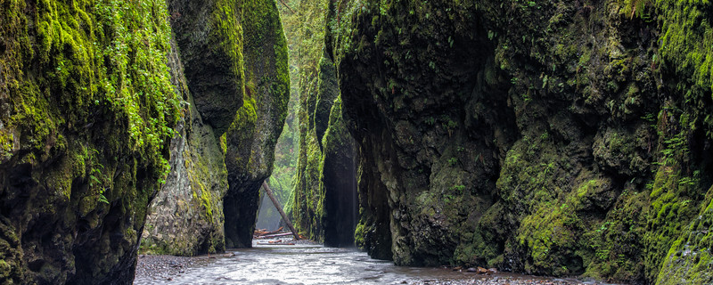 Oneonta Gorge April 2016-22_3_4.jpg
