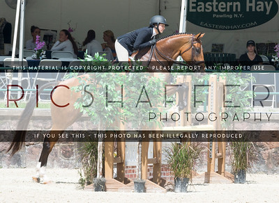 Thursday Adult Hunter and Equitation