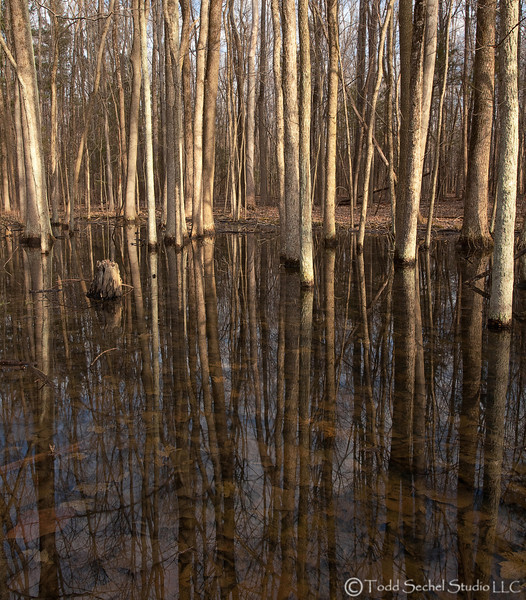 Findley State Park (0134) - Wellington, Ohio