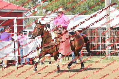 Ray  Bucking Ponies & Wild Pony Races