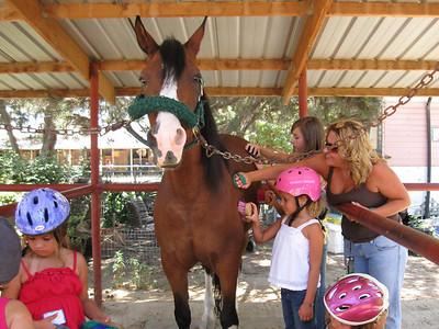 Daisy Troop Horse Badge