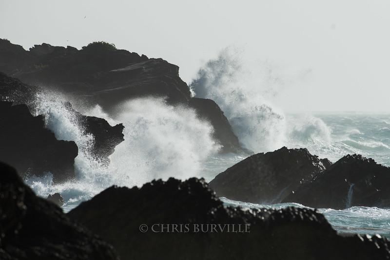 CBurvillePillarSamples015M.jpg