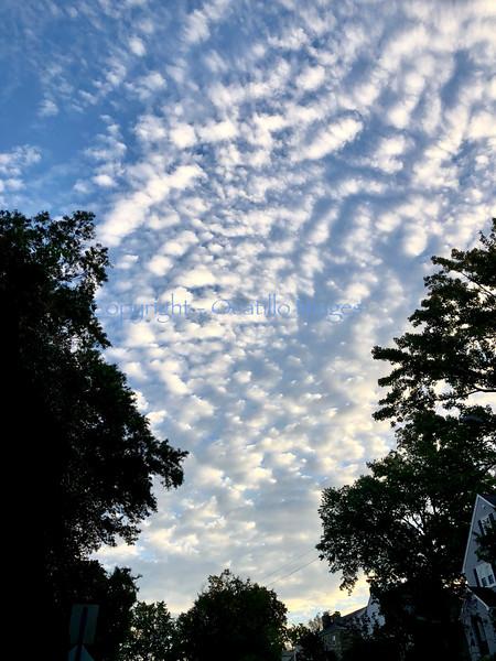 Sky Break.jpg