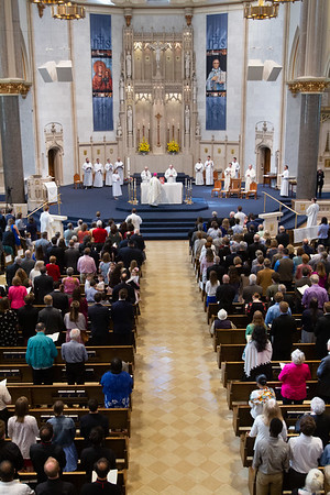 2019 Ordinations Selects