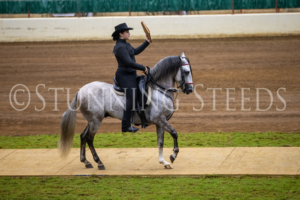 119 Equitation Junior
