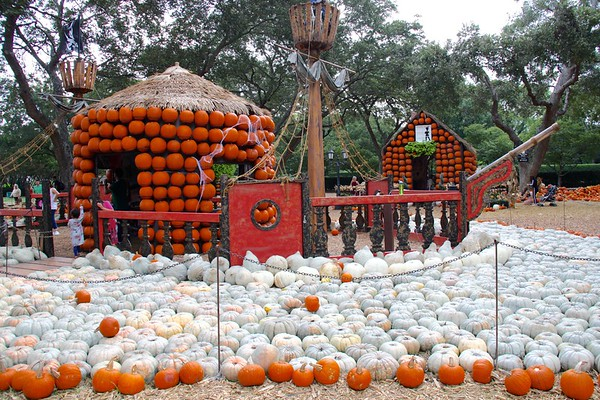 Dallas Arboretum Pumpkin Village October 2018