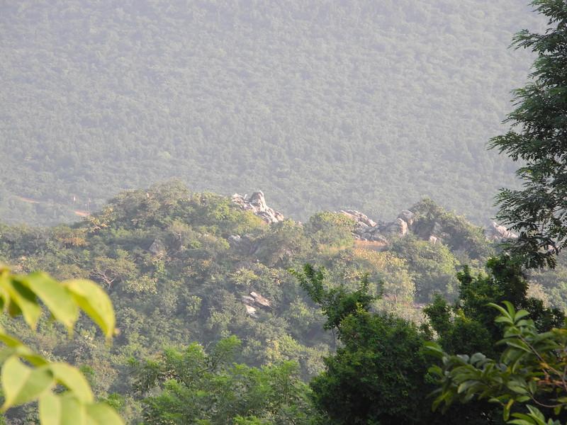 india&nepal2011 339.jpg