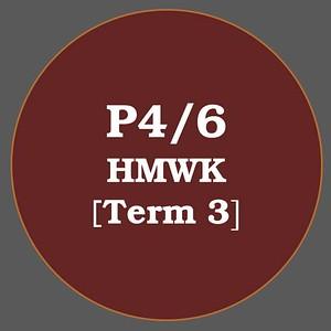 P4/6 HMWK T3