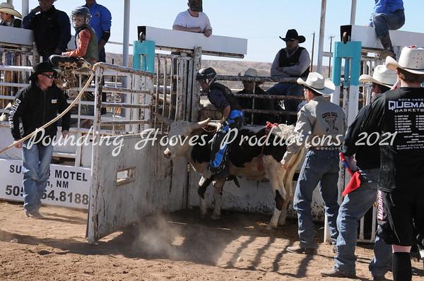 2-17-13 Sat Steers
