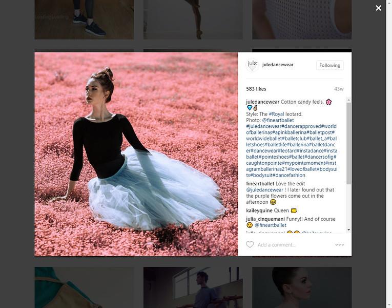 dancewear 2017-05-17_14-28-42.jpg