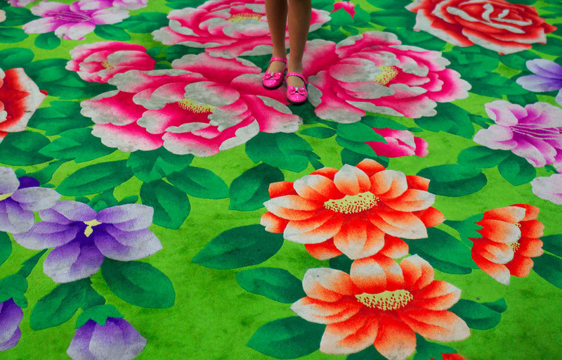 . A young girl stands on floral-print carpet inside the Pyongyang Children\'s Palace in Pyongyang, North Korea on April 14, 2011. The large facility teaches performance arts, fine arts, and sports as extracurricular classes to students in Pyongyang.  (AP Photo/David Guttenfelder)