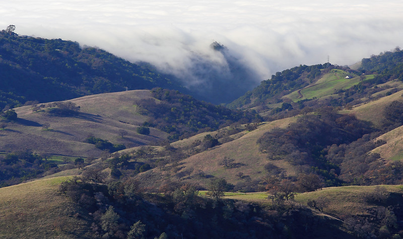Fog overflowing the Valley