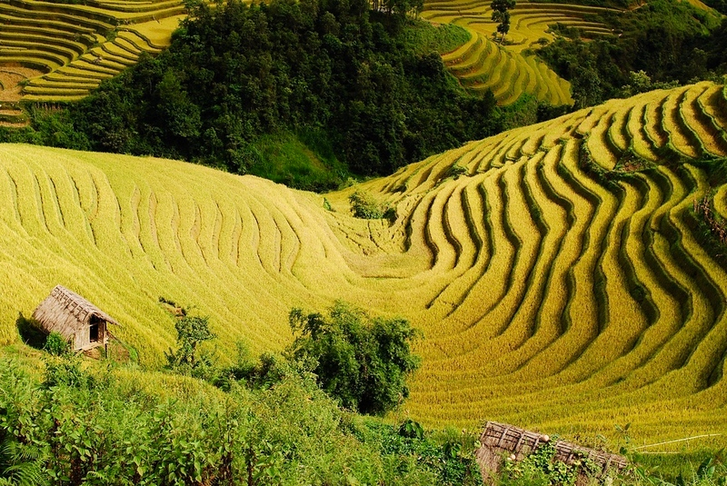 Things to do in Vietnam-Visit Yen Bai