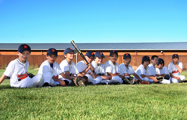 Tigers Baseball Game 3 Sampler