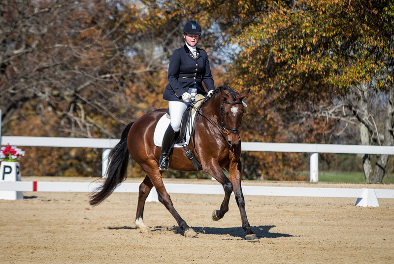 USDF FInals 2017 Friday-074.jpg