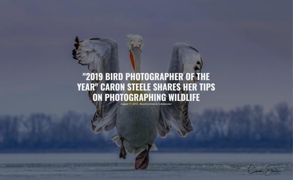 Top 10 Photography Tips Vanguard Blog