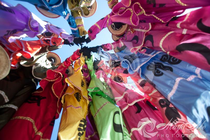 St. Croix Carnival 2010