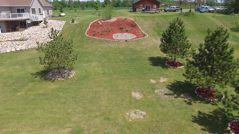 Buffalo Lake Video  (02).MOV