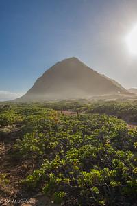 Ka'ena Point Natural Area Reserve