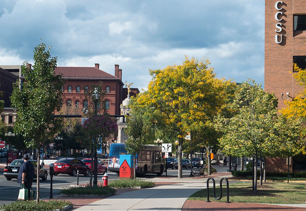 09/24/19 Wesley Bunnell | StaffrrLeaves are turning yellow for fall on the Honey Locust trees near the CCSU ITBD building in downtown New Britain on Tuesday September 24, 2019.