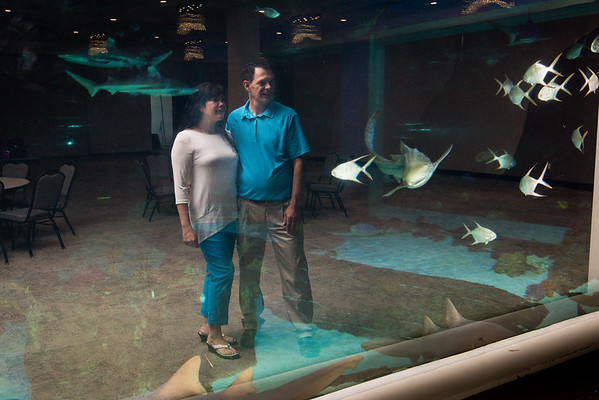 Engagements at Loveland Aquarium