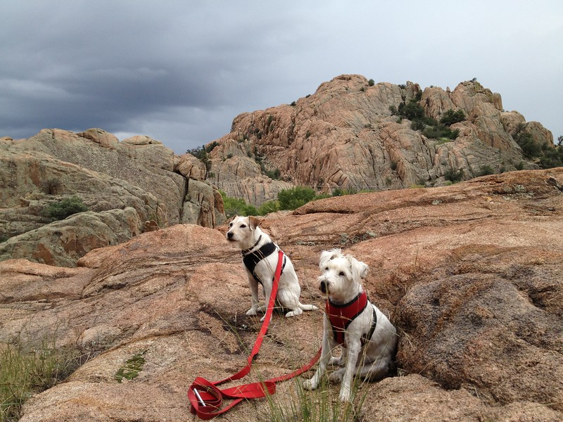 9/8/13. These rocks were part of a series of short loop hikes in The Dells, Prescott, AZ