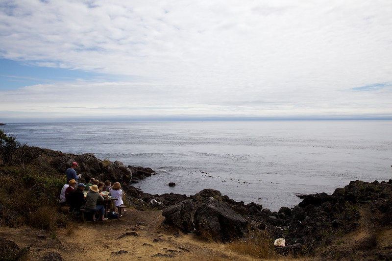 Picnickers at Lime Kiln State Park. San Juan Island, Washington.
