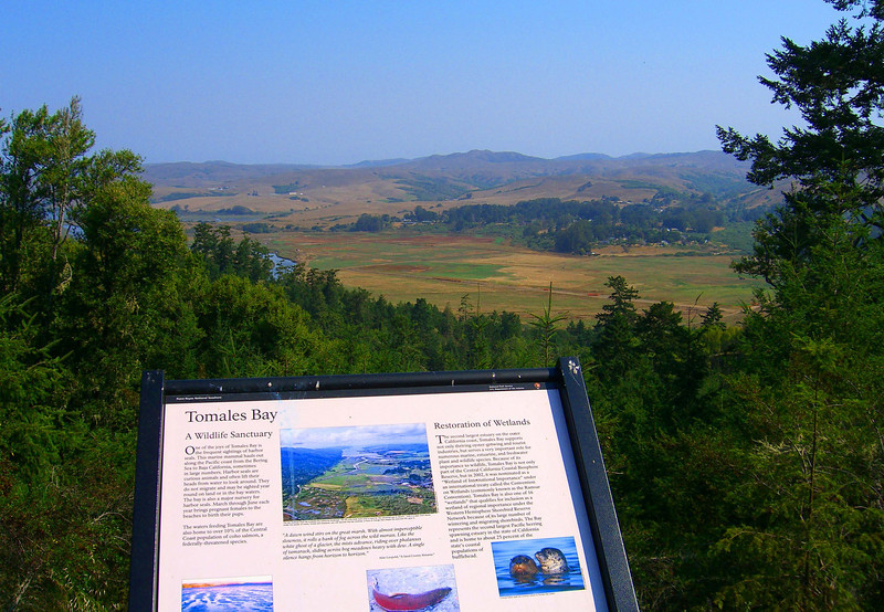 Looking towards Tomales Bay, a wildlife sanctuary, while biking along Limantour Road in Point Reyes National Seashore
