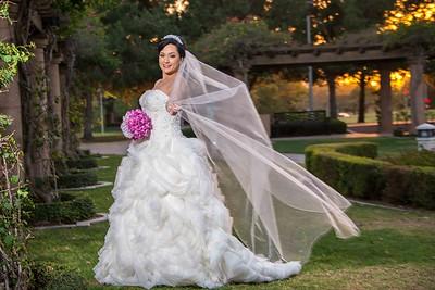 Nastaran & Saed Wedding