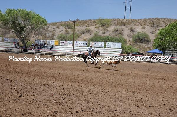 Sierra County 6-23-13 Nov Steer Stopping