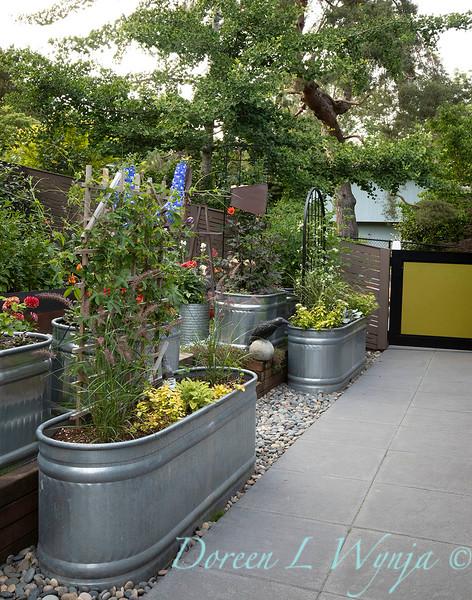 The Chartreuse Garden_1034.jpg