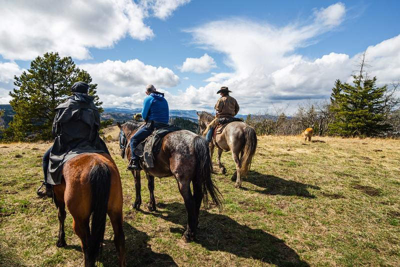 Anchor D Horseback Riding Alberta May 2021