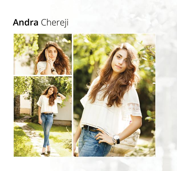15-AndraChereji.jpg