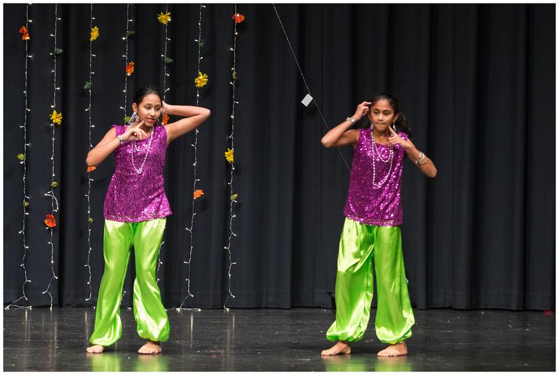 Ashburn Diwali Festival 2014
