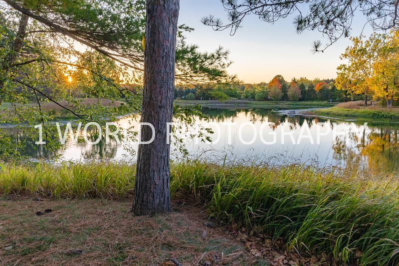 Morton Arboretum Fall 2017-132-19.jpg