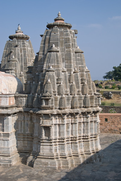 Its amazing how intricately carved these temples are.