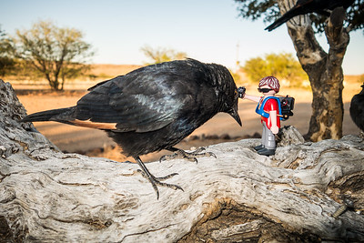 Playmobil in Namibia 2014