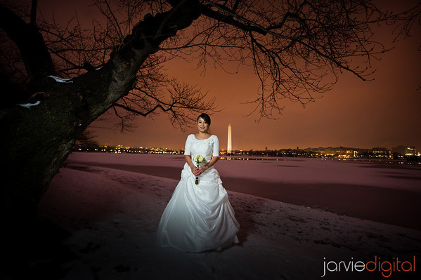 Bridal Pictures at the Tidal Basin in DC at Twilight
