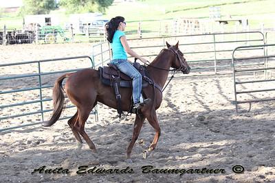 Tasha K Horse 2014