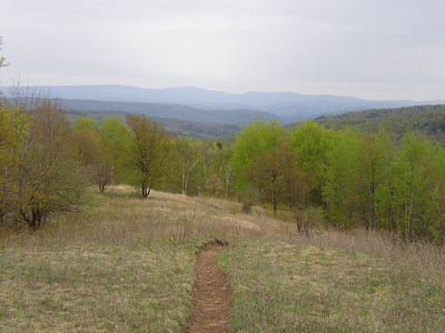Appalachian Trail: Route 12 to Route 14 in Vermont: May 8-9